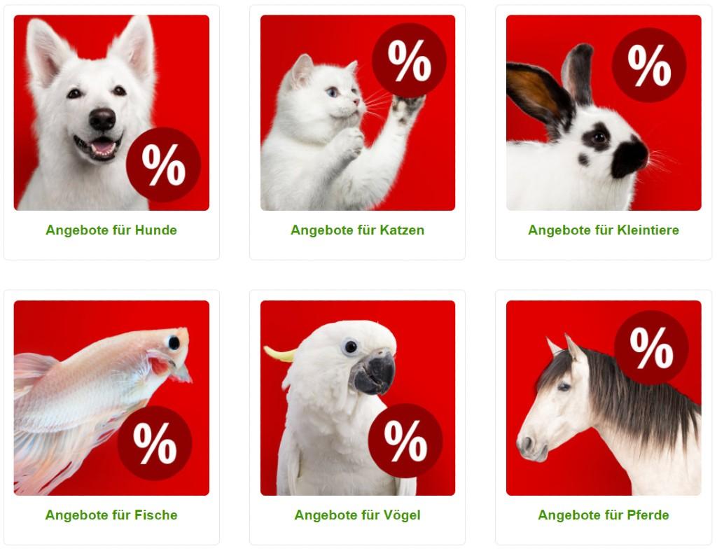 Gutscheine von Zooplus für Tiernahrung und Sale